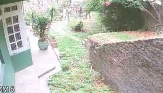 CCTV에 찍힌 네팔 대지진의