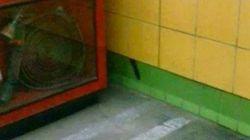 지하철 벽 속에 5년간 갇혀있던