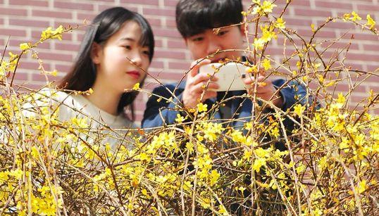봄, 봄, 봄이 왔다!(화보,
