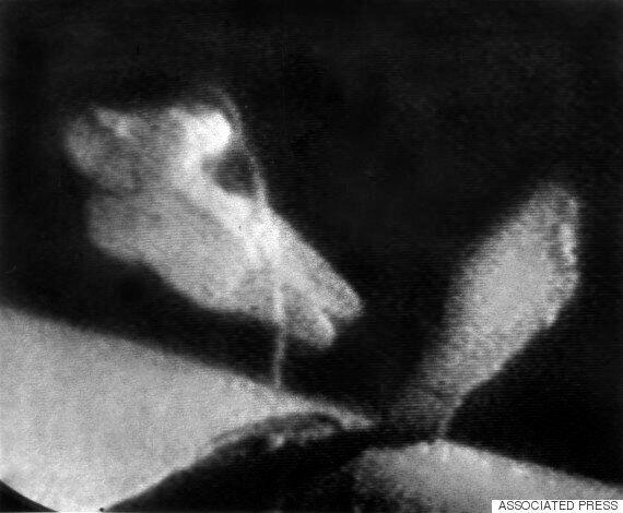 인류 최초의 우주 유영, 50주년을