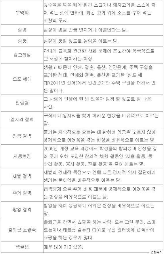 국립국어원, '금사빠녀' '오포세대'등의 신어 344개