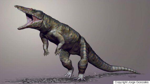공룡보다 먼저 지구를 지배한 거대 악어가