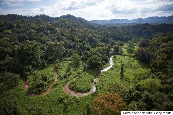 온두라스 열대 우림에서 발견된 전혀 새로운 고대의 문명
