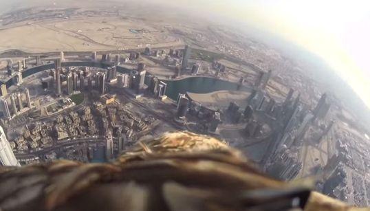 세계 최고층 빌딩에서 지상으로 하강하는