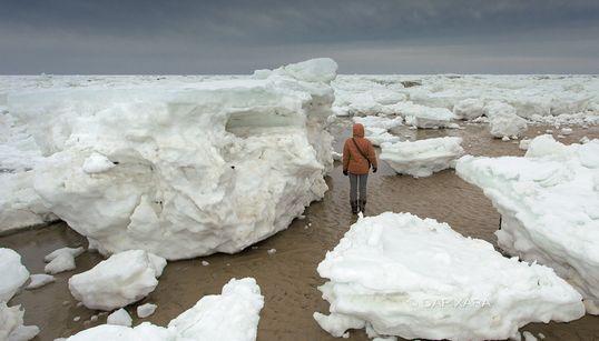매사추세츠 주 연안의 거대한 얼음