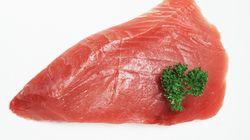 수은 논란 생선, 먹어야 하나 말아야