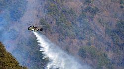강원도 정선 산불, 헬기 17대 투입 진화