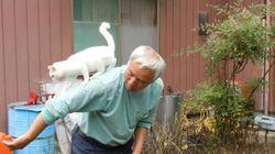 피폭 위험에도 동물을 돌보는 후쿠시마의