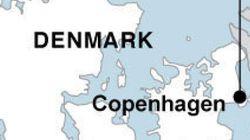 덴마크는 왜 테러 표적이