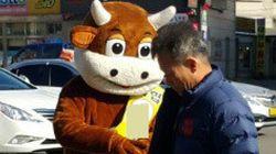 '한우'로 변신한 조합장 선거