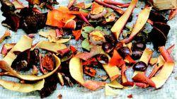 전 세계 음식물 3분의 1이 쓰레기로