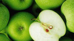 21세기 말, 사과는 강원도 일부에서만