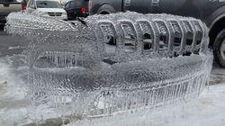 한겨울 주차장에서 발견할 수 있는
