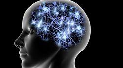 뇌의 생물학적 시계 '리셋'하는 방법