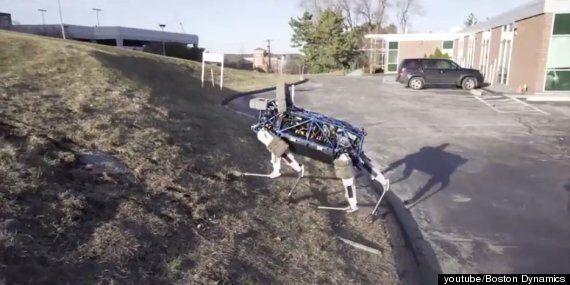 개를 닮은 구글의 로봇, 이름은