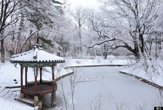 이것이 진짜 겨울 왕궁이다!: 서울