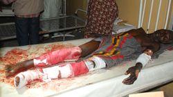 보코하람, 북부 카메룬 마을 습격 '80명
