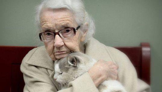 102세 할머니와 2살 고양이의 첫