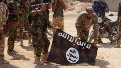 알카에다-IS 테러 공조?