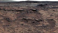 화성 사진에 생명체 흔적이 보인다는 주장이