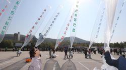 탈북자단체, 새해 벽두부터 '대북 삐라' 기습