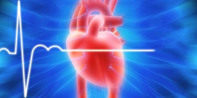 남성, 가임기 여성 목소리 들으면 심장박동
