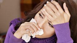 감기, 열에 대한 한의학적