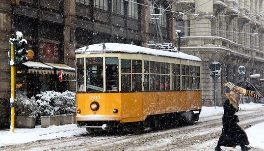 사진으로 보는 세계의 트램