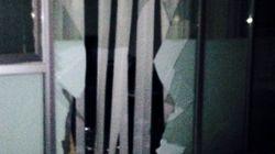 연세대 원주캠, 멧돼지 '습격'