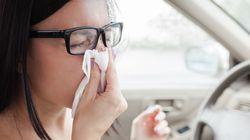 한의사의 감기