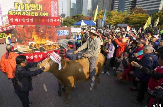 '쇠고기 빅3'(미국, 호주, 뉴질랜드)가 시장을 장악한다 : 한우농가