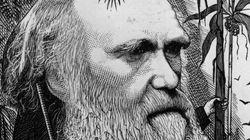 '다윈의 딜레마'가 마침내