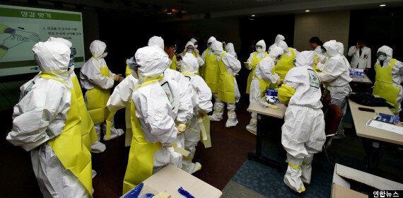 에볼라 의료인력 파견은