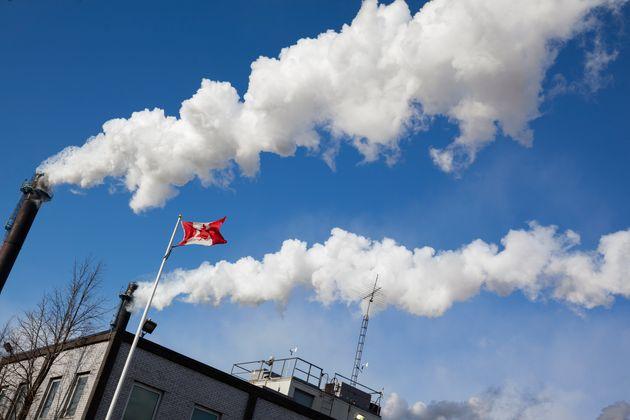Entre éthique et environnement, les Québécois choisissent