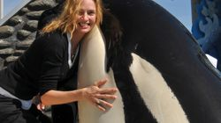 범고래 관광의 두 가지