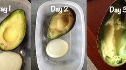 식품을 신선하게 보관하는 방법 17