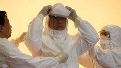 에볼라, 서아프리카 '말리'에도 첫