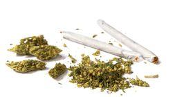 워싱턴DC, 선거에서 마리화나 합법화