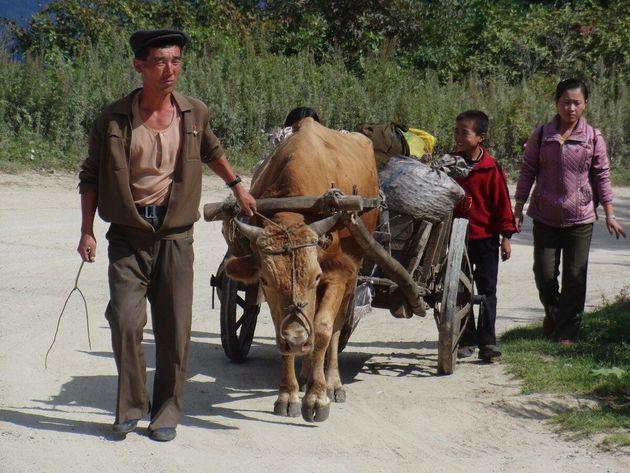 나의 북한 방문기 2편 | '움직이는 새장' 안에서 보이는