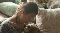 이효리, 블로그 1년 뒤 문