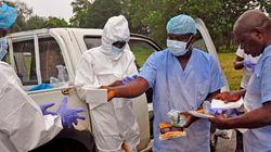 에볼라와 '새로운 에볼라'를 막기 위해 해야 할