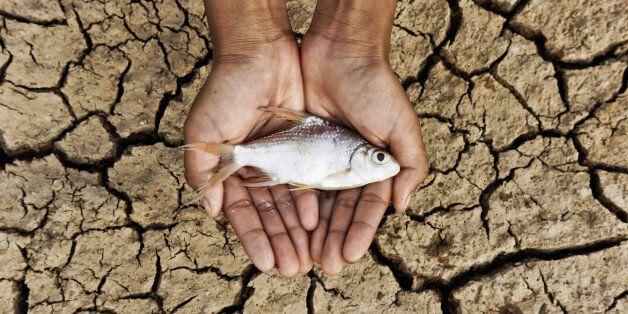 유엔의 경고, 지구 온난화는 되돌릴 수