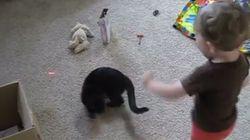 아기와 고양이는 최고의 놀이