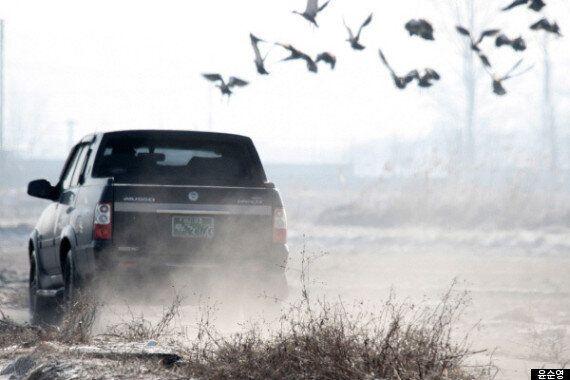 자연을 학대하는 한국의 자연
