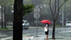 전북 주말 태풍 영향권 : 강풍·폭우