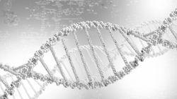 인간에 대한 새로운 과학적 질문을