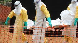 치사율 90% 에볼라 바이러스, 계속 확산