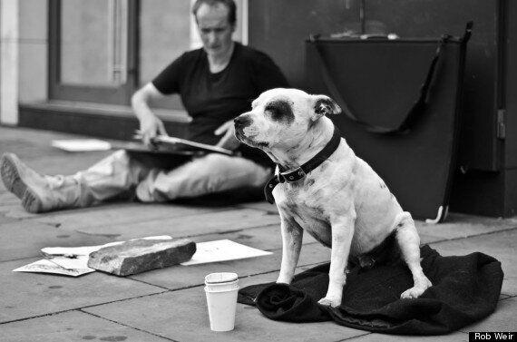 내 인생을 바꾼 개 : 강아지 스케치로 인생을 바꾼 어느 노숙자의