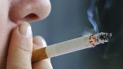 담뱃세 증세론 '솔솔' : 담배가격 10년만에