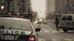 美 백인 경찰관, 고속도로서 흑인 여성 무차별 구타